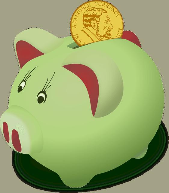 moneybox-158346_640-compressor